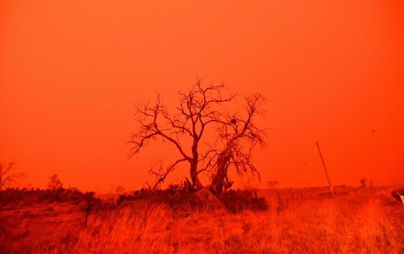 Miles de evacuados por incendios en Australia, Sídney alcanza 48,9 ºC