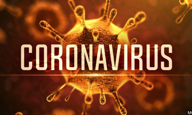 Más de 8.000 muertos en el mundo:¿Y cuándo llega la vacuna contra el coronavirus?